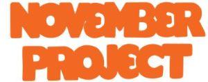 NP logo orange