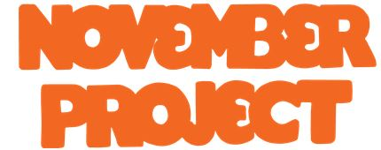 NP logo orange